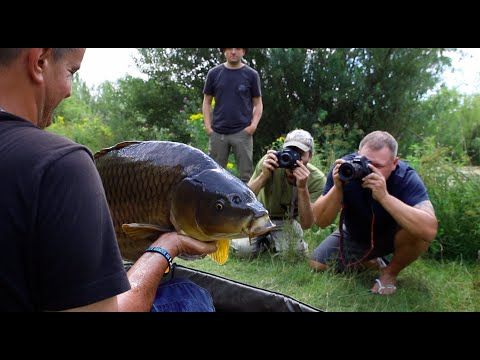 The Most UNIQUE Lake  - Wild Carp Fishing