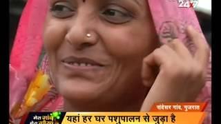 Animal Husbandry and women empowerment in Gujarat