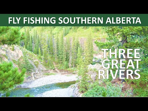 Fly Fishing Southern Alberta - Three Great Rivers