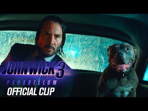 """""""John Wick 3"""": Neuer Trailer hat wenig Action, aber viel Hund"""