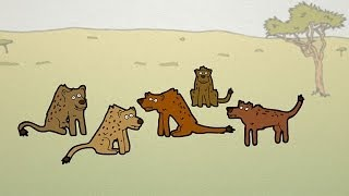 Neat Nature Facts - Hyenas