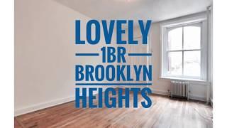 Lovely 1 Bedroom Apartment in Brooklyn Heights Neighborhood near Promenade, Brooklyn Bridge Park NYC