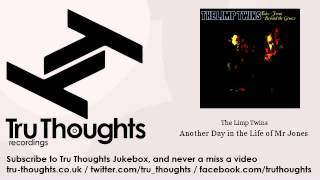 The Limp Twins - Another Day in the Life of Mr Jones - Tru Thoughts Jukebox