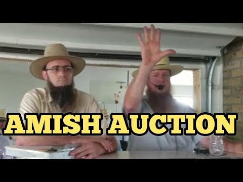 NEVER BEFORE SEEN AMISH AUCTION In Holmes County Ohio With Amish People / Amish Paradise OR Mafia?