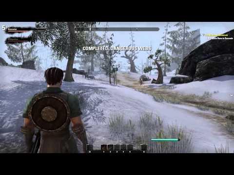Elder Scrolls Online BETA Maxed Settings on Pent. G2020 2.9Ghz, R9 270x