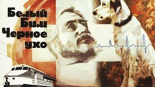 Белый Бим Чёрное ухо 2 серия (1976)