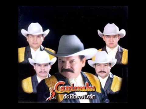 Los Cardenales De Nuevo León Mix ( EN VIVO)