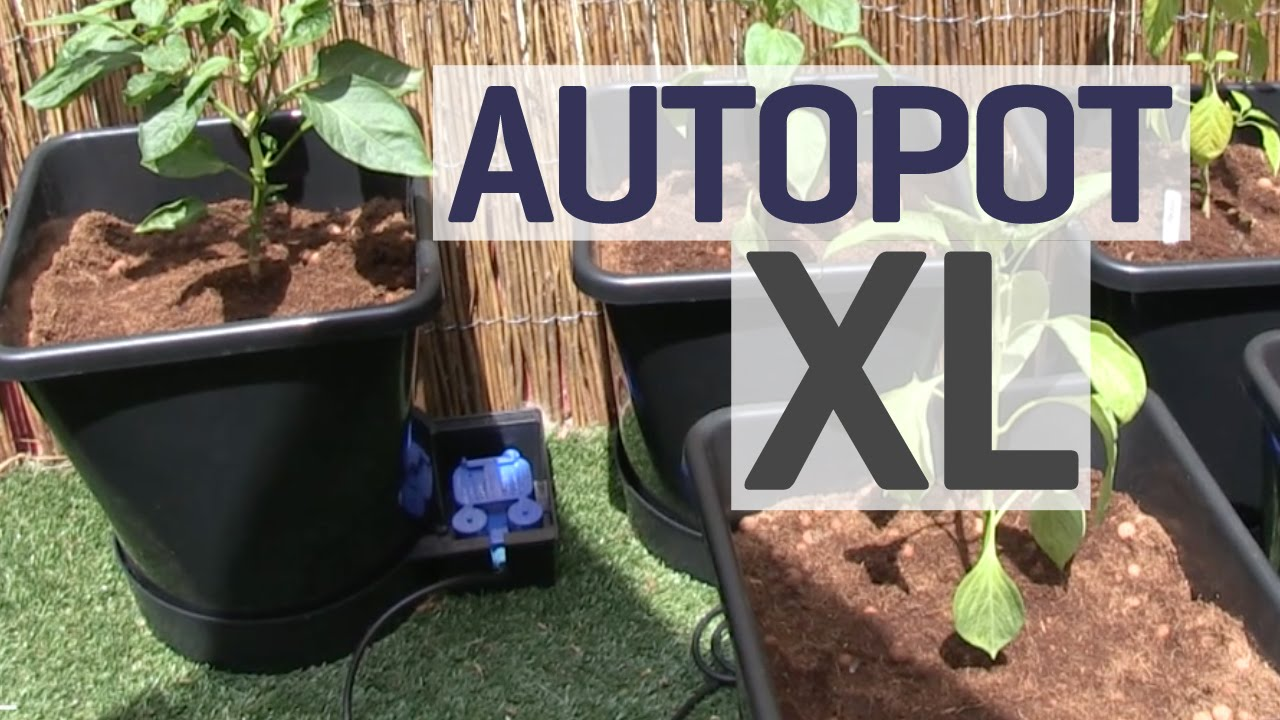 How To Set up an Autopot XL Gravity Fed Growing System