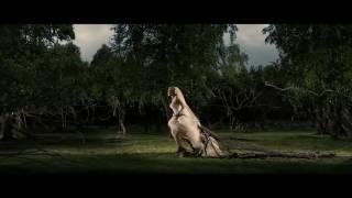 Deftones Phantom Bride Fan Made Music Video