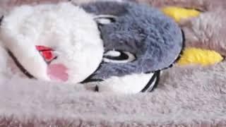 도라에몽 잠옷 극세사 수면 파자마 겨울 여성