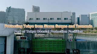 Protecting Tokyo from Storm Surges and Tsunamis —Port of Tokyo Coastal Protection Facilities —