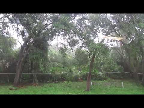 North Port, Florida 2017-09-10 458pm, Hurricane Irma, Facing NE, RR Yard