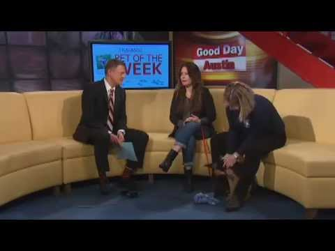 Holly Marie Combs on Good Day Austin March 2015