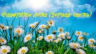 Фавориты лета(1 ч. декоративная)