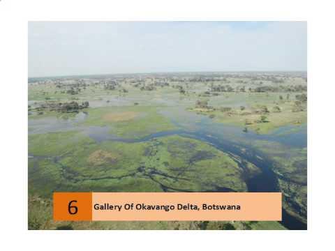 Gallery Of Okavango Delta, Botswana