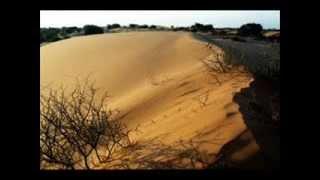 The Rootsman - Ancient Vibrations