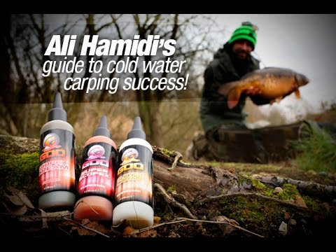 Ali Hamidi's guide to cold water carping success