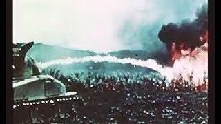 沖縄戦 米軍戦車隊 首里攻防と本島南部の最終戦