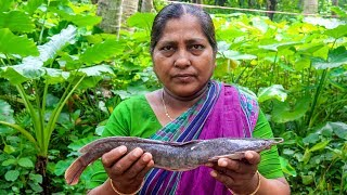 Village Cooking: Catfish Cooking Recipe by Village Food Life
