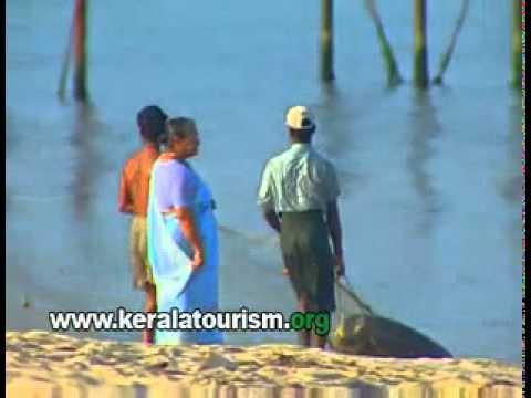 Alappuzha beach_ Kerala.flv