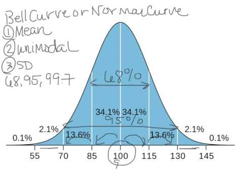 What is a Bell Curve or Normal Curve Explained?