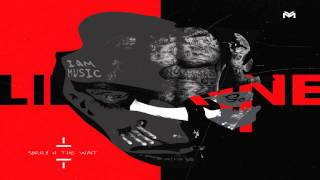 "Lil Wayne- ""Hands Up"" (LYRICS) YScRoll"