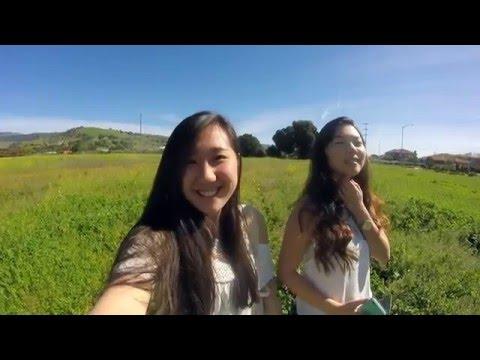 Travel Vlog // Bay Area