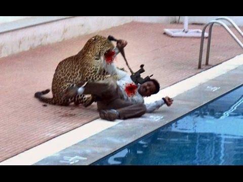 Leopard Attack in Vibgyor School at Marathahalli Bangalore full viral video