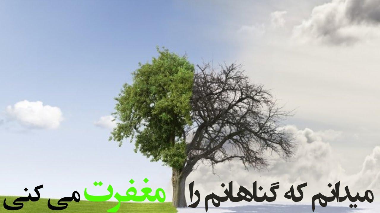 میدانم که گناهانم را مغفرت می کنی ( نشید محمد الحسیان ) | المفلحون HD