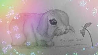Как Нарисовать няшку Кролика Простым карандашом !!(, 2015-10-11T05:20:27.000Z)
