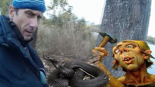 Спасение ядовитой змеи голыми руками.  Змеи Гадюки в городе это нормально