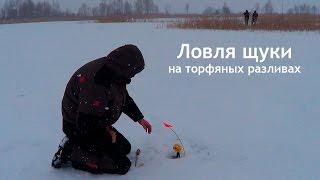 Рыбалка в метель. Торфяные разливы - Сергеевичи. Ловля щуки на ставки (жерлицы)