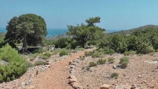 Kreta 2011 - Gavdos