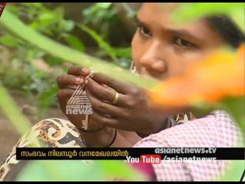 Police-Maoist shootout in Nilambur; Police searches for Maoists