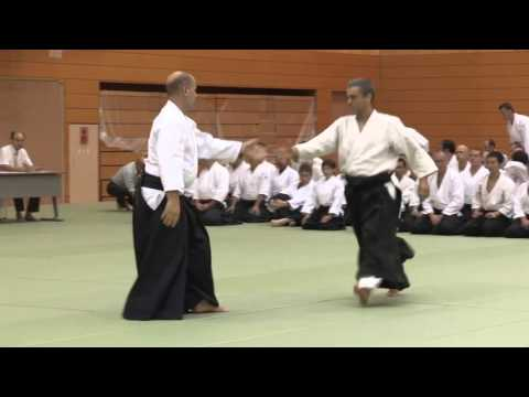 South Africa  - 11th International Aikido Federation Congress in Tokyo - Demonstrations