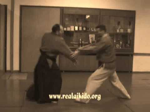 AIKIDO REAL  BASIC TECHNIQUES SEMINAR