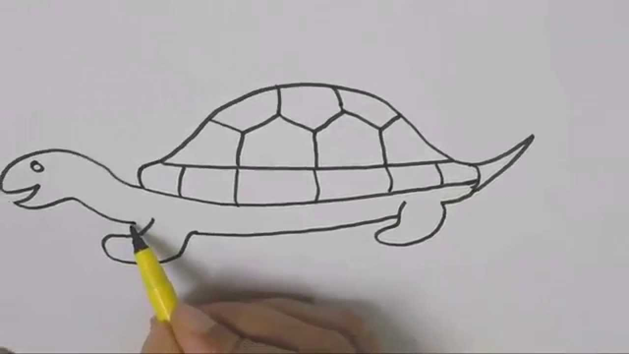 How to draw a Turtle 2 Drawing tutorial step by step for kids