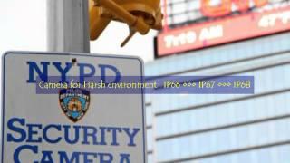 Rugged Cams MegaPixel HD-SDI Business Security Cameras