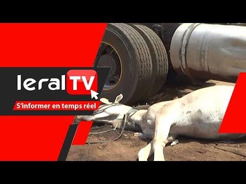 Kaolack: Un camion malien écrase un couple