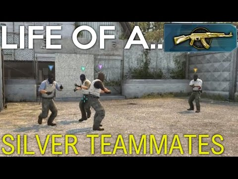 SILVER TEAMMATES! - Life of a Master Guardian (CS:GO Funny Moments)