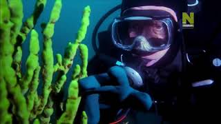 Документальный фильм  Тайны мировых озер  Сибирь  Озеро Байкал