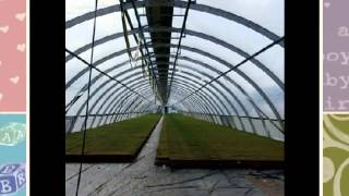 Building A Greenhouse Plans Diy