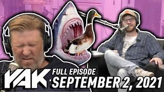 SHARK EAT DUCK! SHARK EAT DUCK!   The Yak 9-2-21