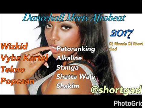 Dancehall Meets Afrobeat Mix (February 2017) Wizkid, Vybz Kartel , Tekno, Shatta Wale (Dj Rizzzle)