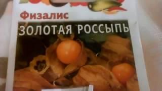 видео Семена физалиса