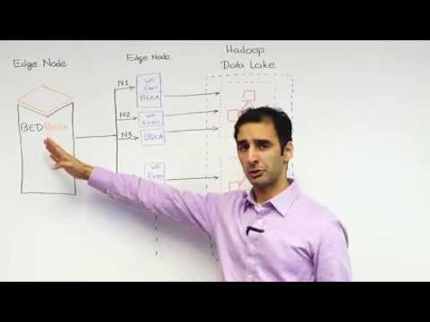 Zaloni Zip: Microservices