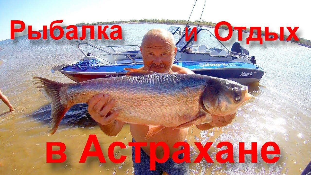Рыбалка, Астрахань, Дедушкин Хутор, Сентябрь 2019 год