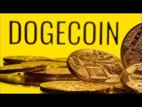 Dogecoin Explained | Experts on Doge And Its Future | Elon Musk | Cryptocurrencies | Crypto News