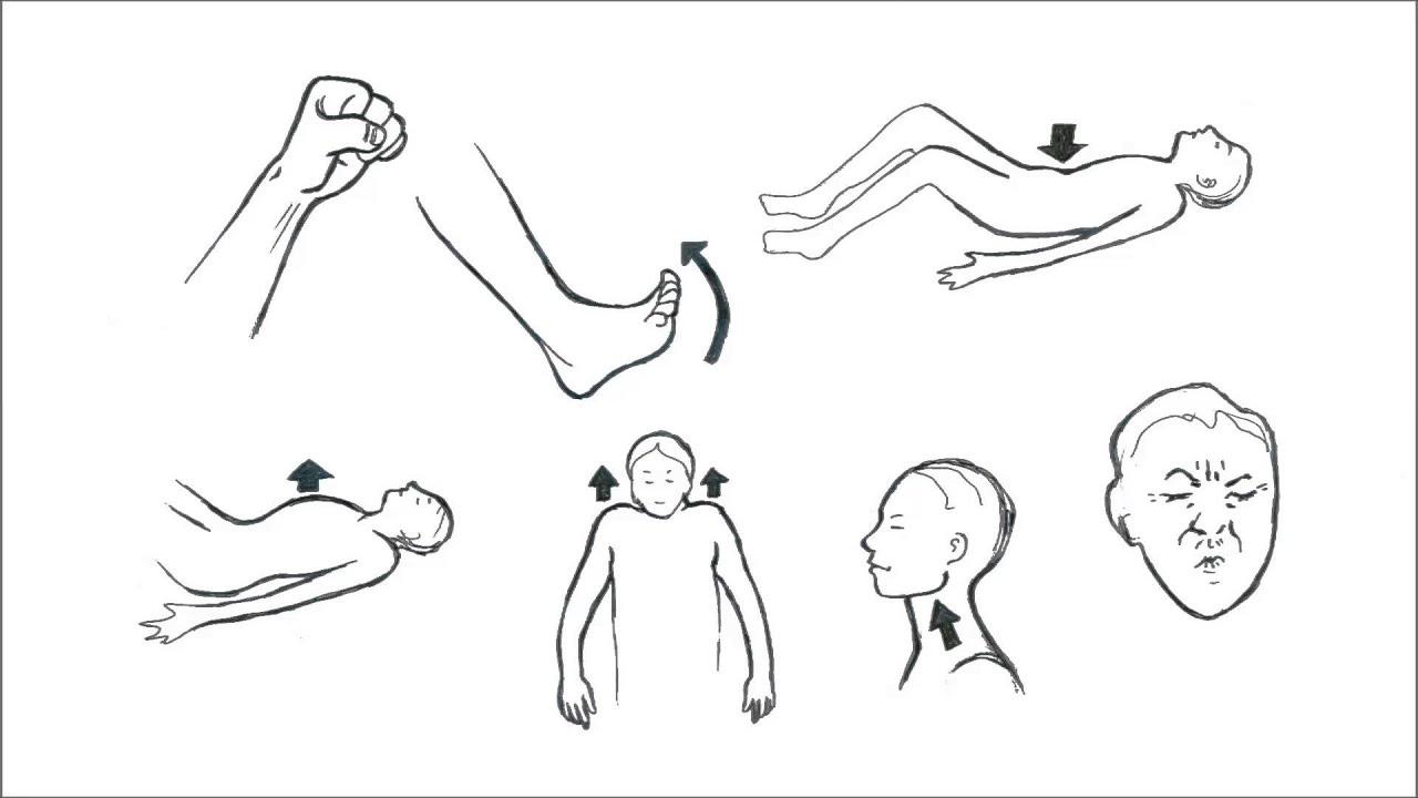 تمرین ٌشل کردن و سفت کردن   (Progressive Muscle Relaxation (Persian
