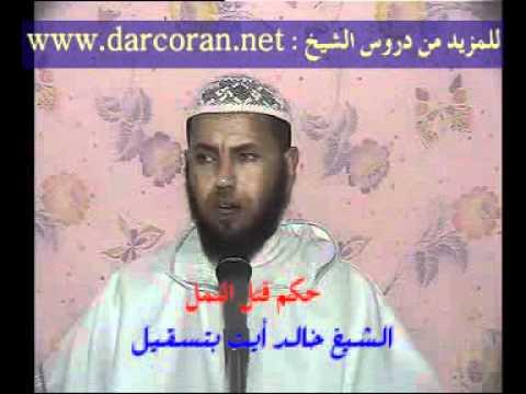 Download حكم قتل النمل   الشيخ خالد ايت بتسقيل